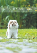 The Truth About Rabbits: A Misunderstood Pet