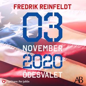 3 november 2020 ödesvalet : Om en demokrati i f