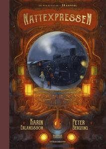 Nattexpressen (e-bok) av Karin Erlandsson