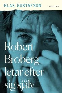 Robert Broberg letar efter sig själv (e-bok) av
