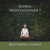 Korta Meditationer 1