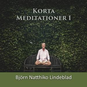 Korta Meditationer 1 (ljudbok) av Björn Natthik
