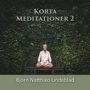 Korta Meditationer 2 (ljudbok) av Björn Natthik
