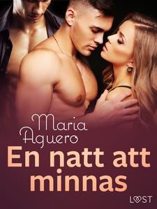 En natt att minnas - erotisk novell (e-bok) av
