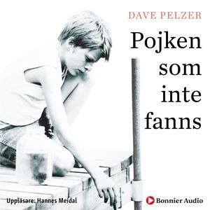Pojken som inte fanns (ljudbok) av Dave Pelzer