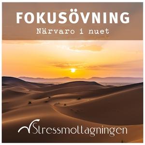 Fokusövning – Närvaro i nuet (ljudbok) av Stres