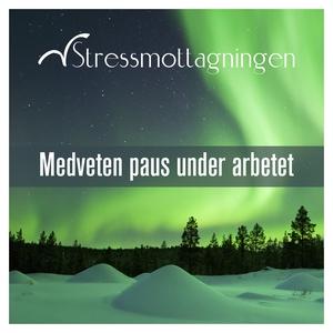 Medveten paus under arbetet (ljudbok) av Stress