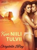 Kun Niili tulvii - eroottinen novelli