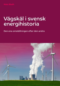 Vägskäl i svensk energihistoria: Den ena omstäl