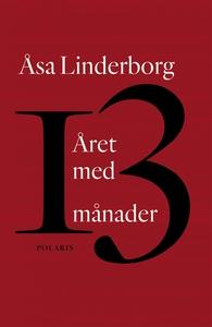 Året med 13 månader (e-bok) av Åsa Linderborg