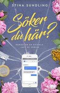 Söker du här? (e-bok) av Stina Sundling