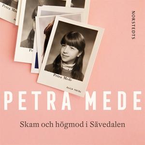 Skam och högmod i Sävedalen (ljudbok) av Petra