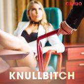 Knullbitch