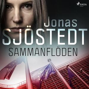 Sammanflöden (ljudbok) av Jonas Sjöstedt