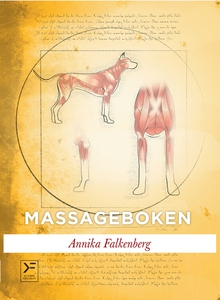 Massageboken (e-bok) av Annika Falkenberg