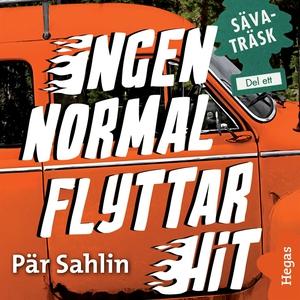 Ingen normal flyttar hit (ljudbok) av Pär Sahli