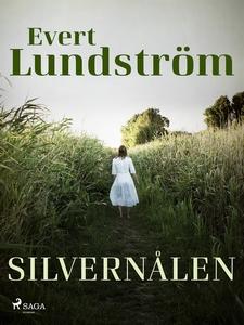 Silvernålen (e-bok) av Evert Lundström