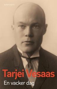 En vacker dag (e-bok) av Tarjei Vesaas