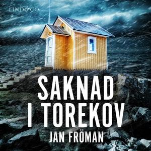 Saknad i Torekov (ljudbok) av Jan Fröman