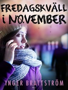 Fredagskväll i november (e-bok) av Inger Bratts