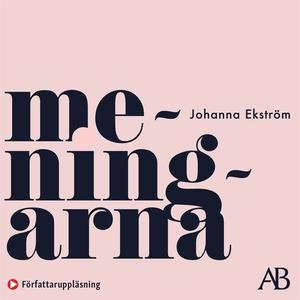 Meningarna (ljudbok) av Johanna Ekström