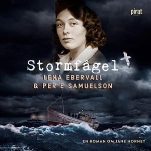 Stormfågel (ljudbok) av Lena Ebervall, Per E Sa