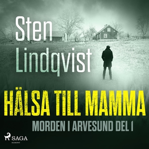 Hälsa till mamma (ljudbok) av Sten Lindqvist