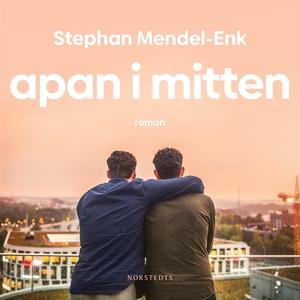 Apan i mitten (ljudbok) av Stephan Mendel-Enk