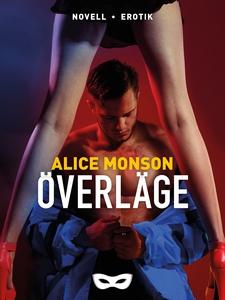 Överläge (e-bok) av Alice Monson