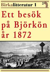Ett besök på Björkön år 1872. Birkalitteratur n