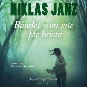 Bandet som inte får brista (ljudbok) av Niklas