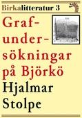 Grafundersökningar på Björkö. Birkalitteratur nr 3. Återutgivning av text från 1876