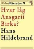 Hvar låg Ansgarii Birka? Birkalitteratur nr 9. Återutgivning av texter från 1872 och 1877