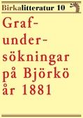 Grafundersökningar på Björkö år 1881. Birkalitteratur nr 10.