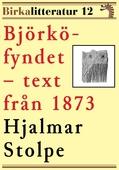 Björkö-fyndet. Birkalitteratur nr 12. Återutgivning av nyhetsartiklar från 1873