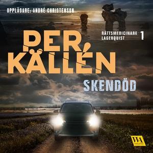 Skendöd (ljudbok) av Per Källén