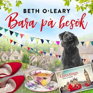 Bara på besök (ljudbok) av Beth O'Leary