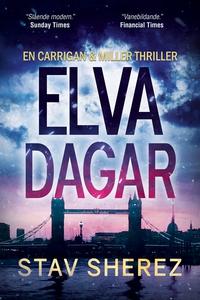 Elva dagar (e-bok) av Stav Sherez