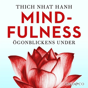 Mindfulness: Ögonblickens under (ljudbok) av Th