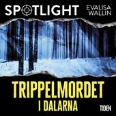Trippelmordet i Dalarna