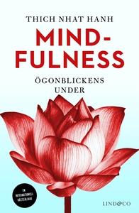 Mindfulness : Ögonblickens under (e-bok) av Thi