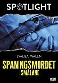 Spaningsmordet i Småland