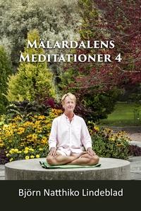 Mälardalens Meditationer 4 (ljudbok) av Björn N