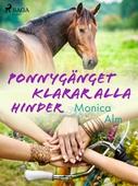 Ponnygänget klarar alla hinder