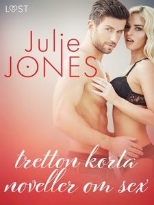 Julie Jones: tretton korta noveller om sex (e-b