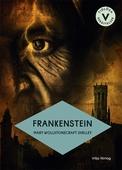 Frankenstein (lättläst)