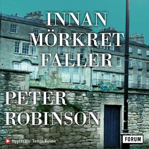 Innan mörkret faller (ljudbok) av Peter Robinso