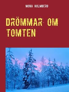 Drömmar om tomten (e-bok) av Mona Holmberg