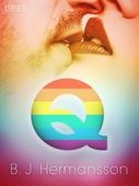 Q - erotisk novell