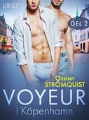 Voyeur i Köpenhamn 2 - erotisk novell